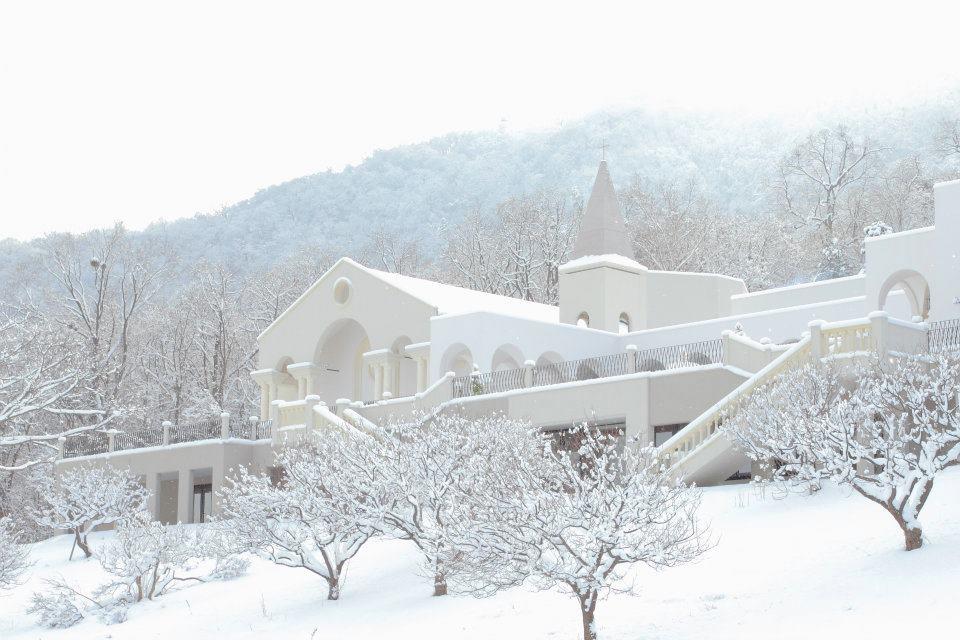 金紗夢|玫瑰克萊思特教堂 冬季